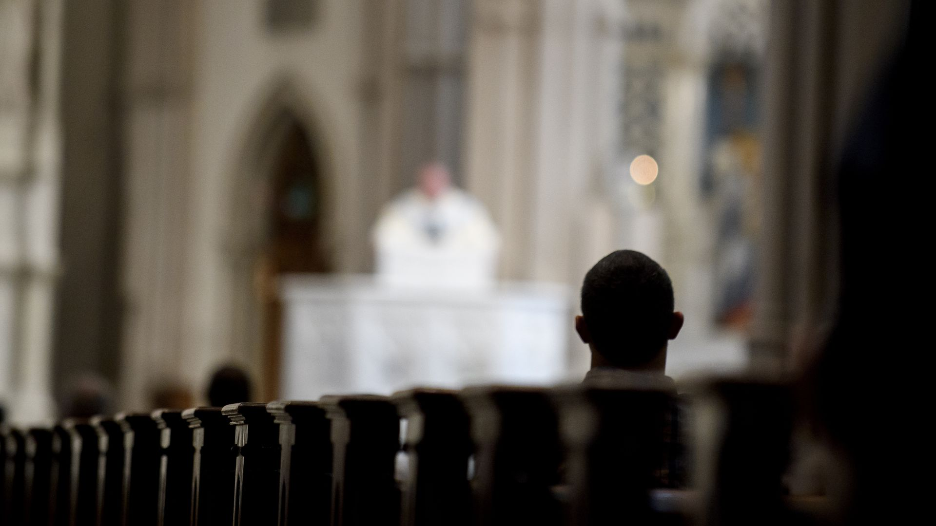Выборы в США: «Декларация принципов» католического движения Pax Christi