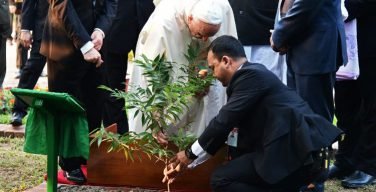 Послание Папы Франциска на Всемирный день молитв о защите Божьего творения