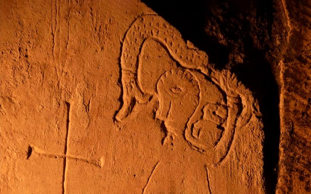 Голова птицы, тело змеи и рыбий хвост: в древнем храме Переславля-Залесского обнаружили граффити фантастического существа
