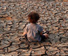 Видеопослание Папы экосаммиту ООН: «Пришло время изменить курс»