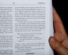 Папа Франциск назначил еще двух женщин в Папскую библейскую комиссию