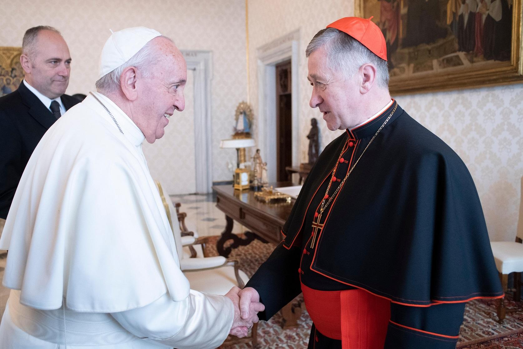 Папа принял кардинала Супича на частной аудиенции в Апостольском дворце — СМИ
