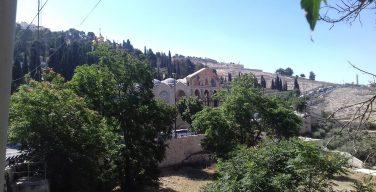 Места Страстей. Гефсимания, святилище Христовой молитвы