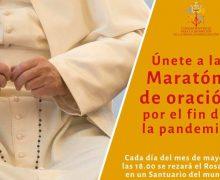 Присоединяйтесь с Розарием в руках к ежедневному прямому эфиру из богородичных святилищ в рамках молитвенного «марафона»