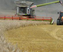 Ватикан проведёт конференцию по продовольственным системам