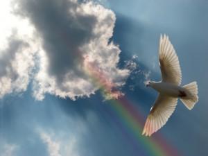 Голубь мира - символ Святого Духа