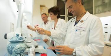 Ватиканская аптека для мигрантов: милосердие в лаборатории