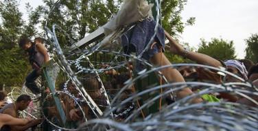 СМИ: Венгерская реформатская церковь поблагодарила правительство за защиту от мигрантов