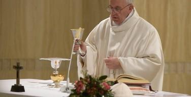 Папа: мы — не волшебники, наши усилия открывают двери Святому Духу