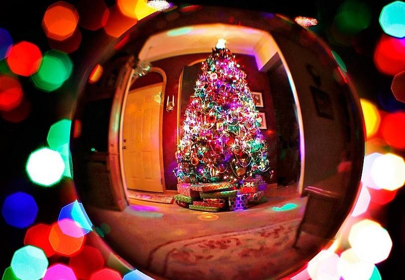 Символы Рождества: елка