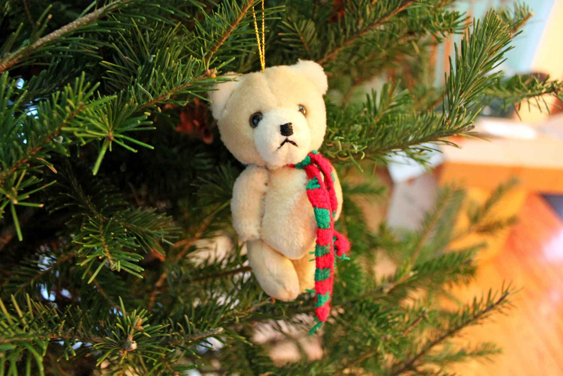christmas-bear