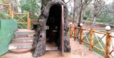 Внутри многовекового дуба в Грузии оборудовали молельню
