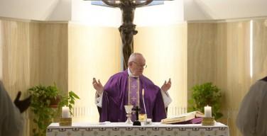 Папа: безумие Креста – единственный путь к спасению