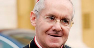 Кардинал Торан: в энциклике «Laudato Si» Папа Франциск предлагает человечеству «новую цивилизацию»