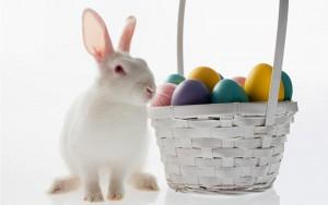 """Корзинка с пасхальными яйцами и """"пасхальный"""" кролик"""