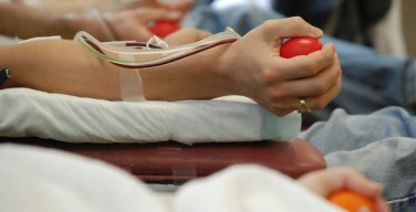 Рим: доноры крови получат льготные билеты в ватиканские музеи