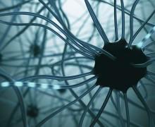 Искусственный мозг может быть создан в ближайшее время — СМИ
