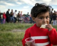 В 2017 году Всемирный день беженца будет посвящён малолетним мигрантам без родителей