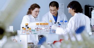 Ученые нашли формулу безвредного опиоида