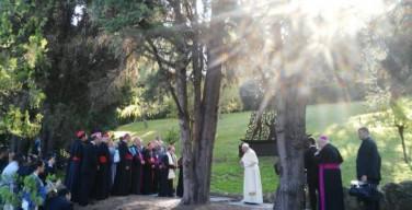 Папа благословил статую Богоматери Апаресиды и помолился за Бразилию (ФОТО + ВИДЕО)
