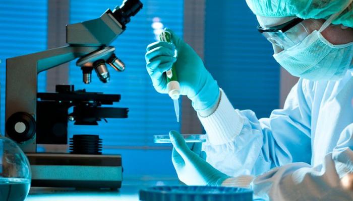 Медицина будущего: в кровеносные сосуды людей запустят нанорыб