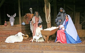 nativity_3131849k