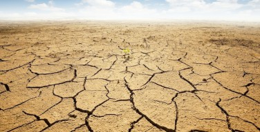 Святейший Престол: вода может стать причиной третьей мировой войны