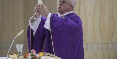 Папа: Господь не перестаёт искать заблудившихся овец