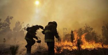 Папа выразил солидарность с пострадавшими от пожаров в Чили