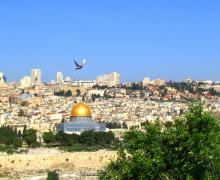 Святая Земля: епископы из Европы, Америки и Африки посещают местные христианские общины