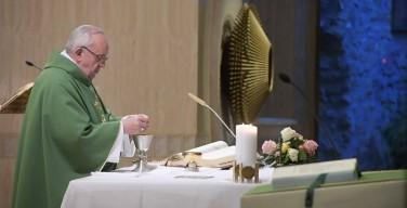 Папа: Бог даровал нам ДНК Своих детей и вверил творение нашей заботе