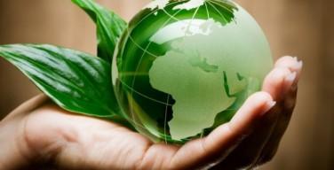 Папа приветствовал Всемирное католическое движение по защите климата