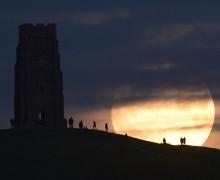 СМИ: в Англии кроличья нора оказалась входом в подземный храм тамплиеров