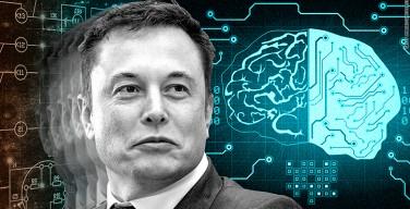 Новая компания Илона Маска подсоединит мозг человека к компьютеру