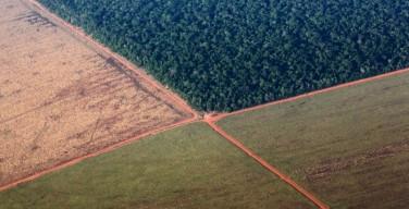 Папа поддержал «экологическую» кампанию бразильской Церкви