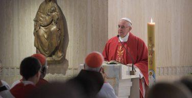 Папа: Евангелие возвещается не силой, а смирением