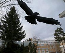 Митрополит Иларион: РПЦ не принимала участие в запрете «Свидетелей Иеговы» в РФ