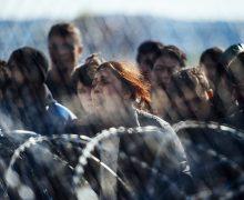 Ватиканский дипломат: только мир может упорядочить миграционные потоки