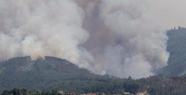 Папа Франциск призвал молиться за Португалию, где в пожарах погибли люди