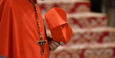 Совет кардиналов: в Римской Курии должно быть больше молодёжи и женщин