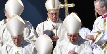 Папа созывает специальную ассамблею Синода епископов, посвященную региону Амазонии