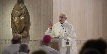 Папа Франциск: добрый пастырь прикасается к израненной плоти