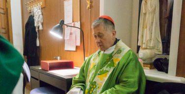 «Большой день» кардинала Супича в Новосибирске (+ ФОТО)