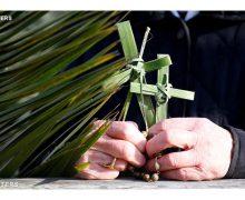 Перед молитвой «Ангел Господень» Папа Франциск призвал верных должным образом пережить Страстную неделю