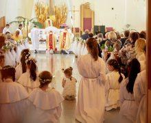 VIII Всероссийская встреча молодёжи пройдет в Иркутске и Байкальске