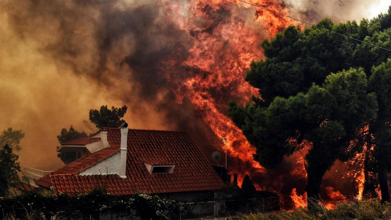 Святейший Отец молится о жертвах пожаров в Греции
