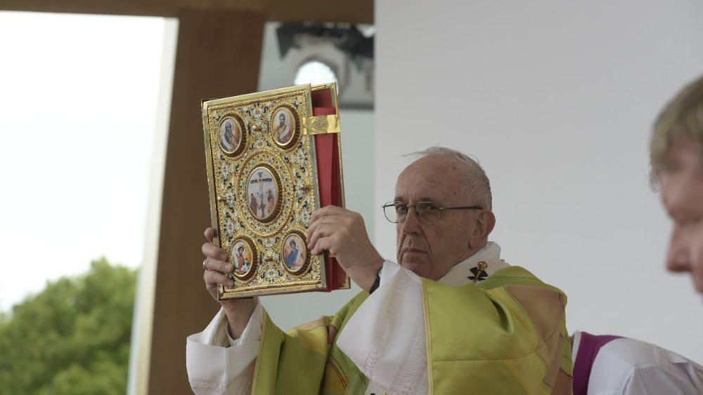 Проповедь Папы Франциска на заключительной св. Мессе Всемирной встречи семей. 26 августа 2018 г., «Феникс-Парк», Дублин (Ирландия)