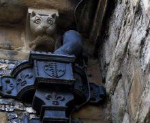 В лондонском соборе установили барельеф бездомной кошки, живущей в храме (ФОТО)