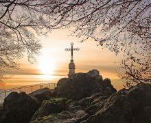 Горькое лекарство. Размышление в праздник Воздвижения Святого Креста