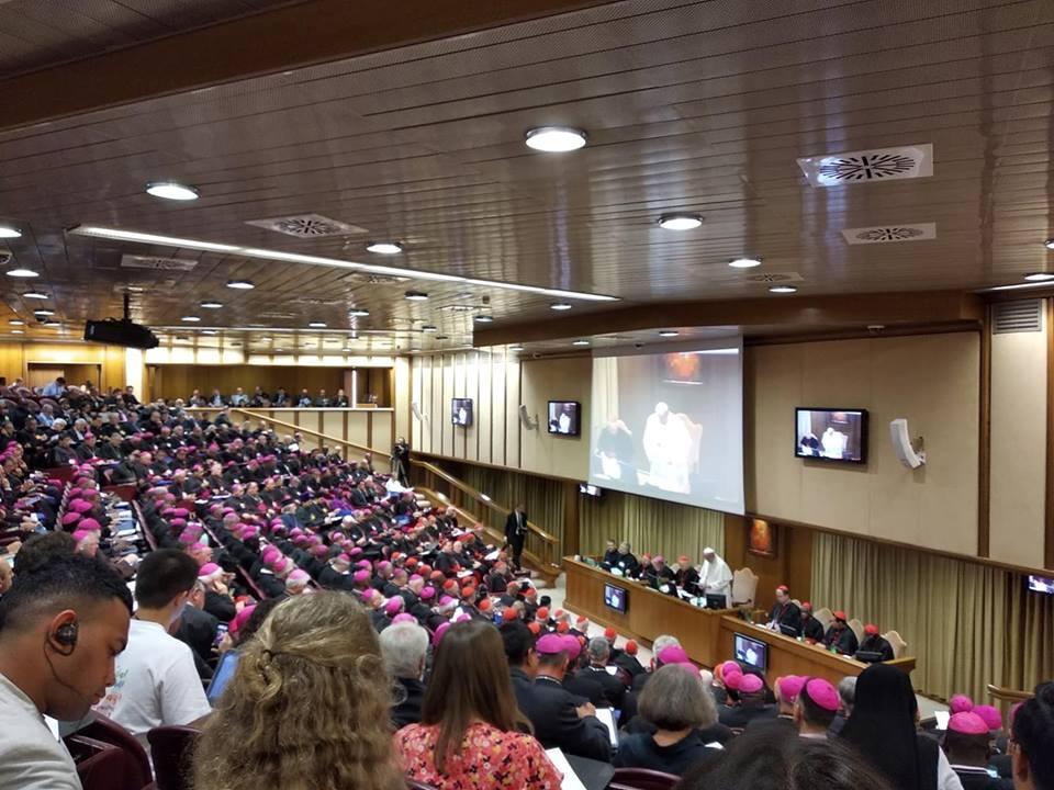 Новости с Синода епископов в Ватикане